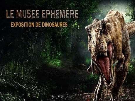 Le Musée Ephémère à Carcassonne