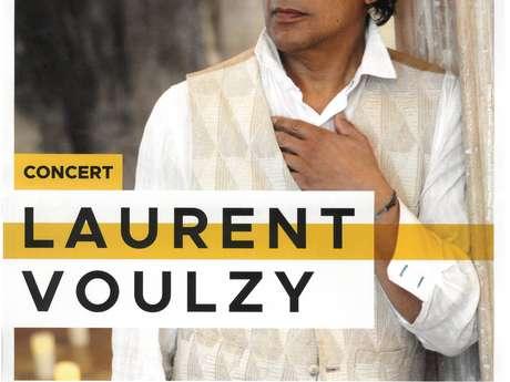FULL CONCERT / Concert of Laurent Voulzy in Montauban