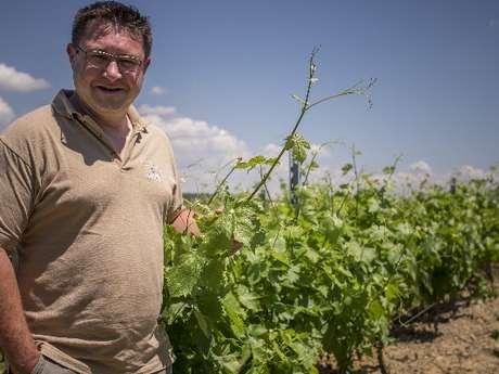 Dégustation de vins - vue sur le quai de déchargement et cuves - Vignobles de Carsac