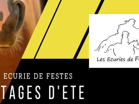 STAGE D'ÉTÉ - ÉCURIES DE FESTES