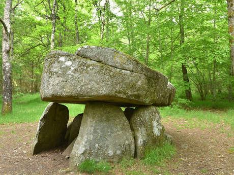 Circuit de randonnée : De dolmen en Donjon