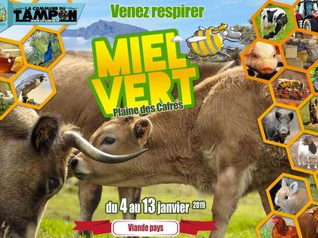 Miel Vert 2019