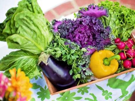 Légumes Côte d'Albâtre