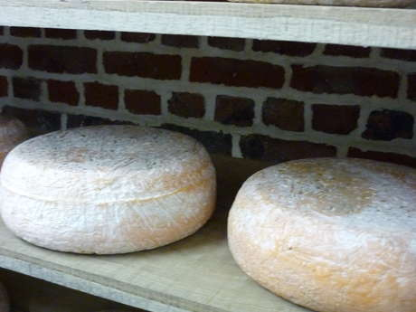 Jacques Martel, artisan fromager