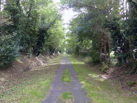 Cycling path 6 : Between the Arnoult Valley and the Channel Charente-Seudre - 9 mi