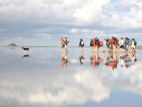 Traversées de la Baie avec des Guides Nature