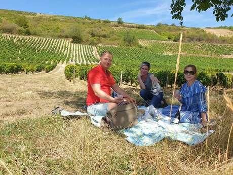 Wine Geometry Tours
