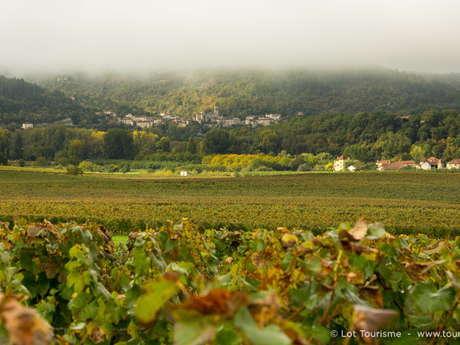 Rando dans le vignoble de Cahors - 5 jours à cheval