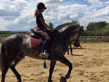 Ecole d'équitation du Bélice