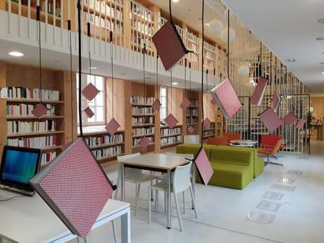 The suspended library