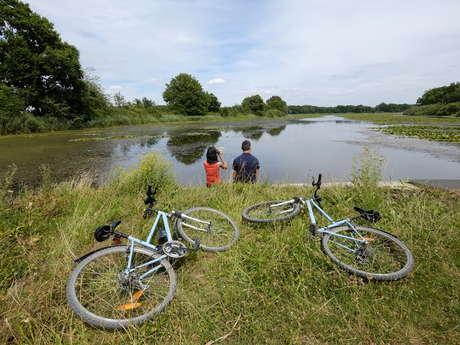 Voyage autour des étangs