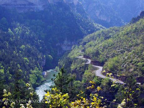 Itinérance le long du Tarn, des gorges à la vallée