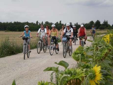 Itinéraire 20 - Entre vignes et coteaux du Touraine-Mesland