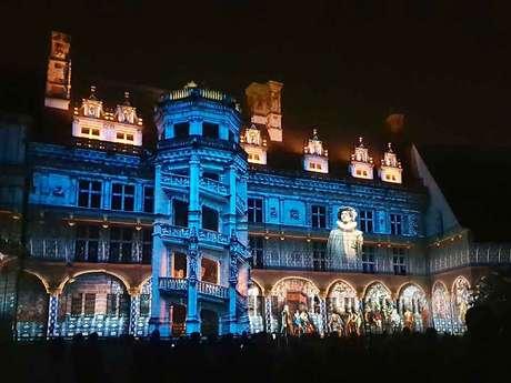 Spettacolo Suoni e Luci - Castello Reale di Blois