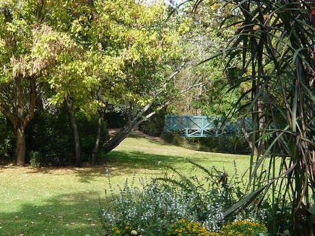 Atelier jardin des plantes : Palette végétale