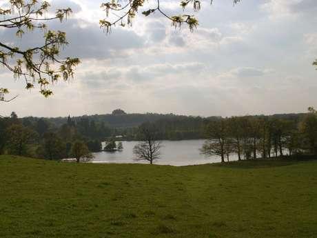 Circuit de randonnée :  Les mille et un étangs