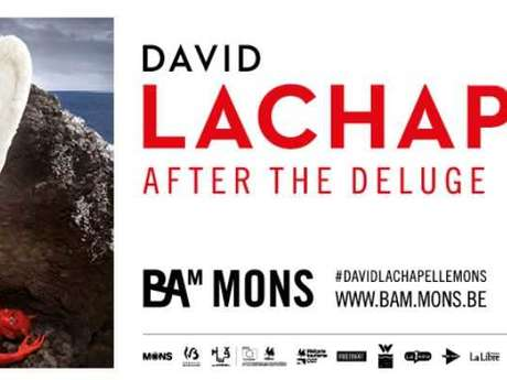 After the Deluge : visites guidées de l'exposition David LaChapelle