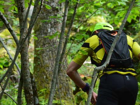Circuit Trail n°9 : des carrières au Parc Animalier