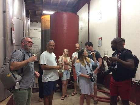 Excursion en minibus - 1/2 Journée - Visite de 2 vignobles & Dégustation de vins - Excursion partagée - F/GB