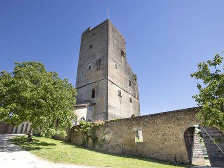 Around the castle