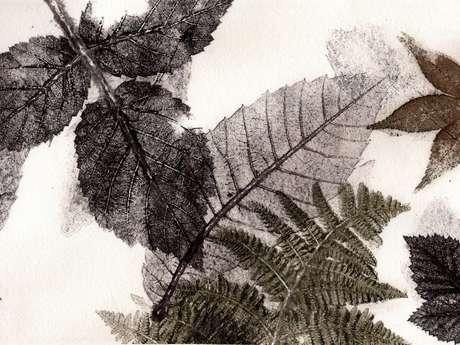"Atelier ""ART & NATURE"""