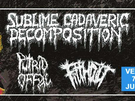 Sublime Cadaveric Decomposition / Putrid Offal / Filthcult