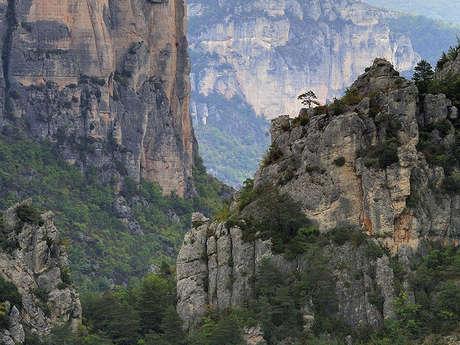 Circuit panoramique des Gorges de la Jonte et les Gorges du Tarn