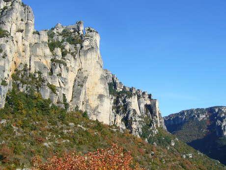 Gorges de la Jonte et Causse Méjean