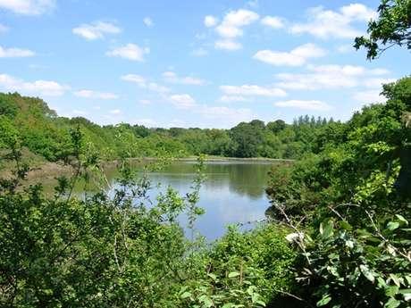 Les étangs de Penfoulic