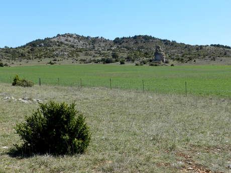 Les paysages de l'agro-pastoralisme : 73 km