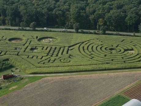Labyrinthe Végétal Beauregard