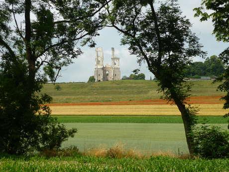 Les tours de Mont-Saint-Eloi