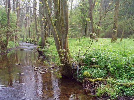 Hauts-Pays Natural Park