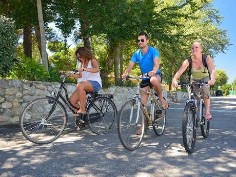 Les Vélos d'Adrien, location de vélos et rosalies