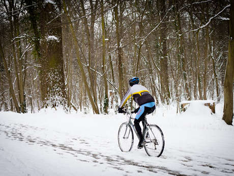 Itinéraire cycliste en forêt de Saint-Germain-en-Laye