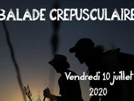 """Sortie nature à Neuville-sur-Ailette : """"Balade crépusculaire"""""""