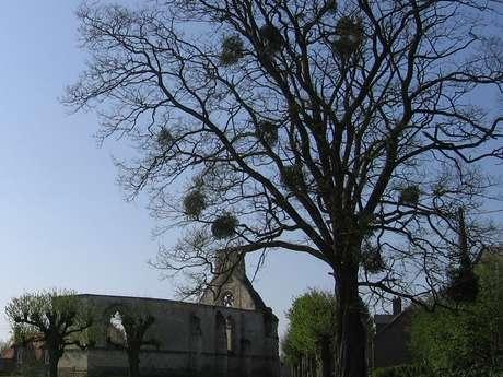 Chapelle des Endormis