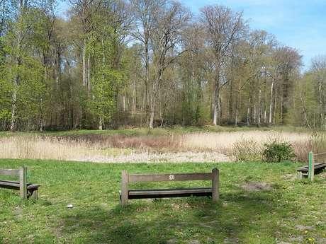L'étang de Malva