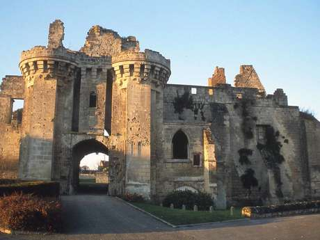 Des tours de Soissons au donjon de Septmonts