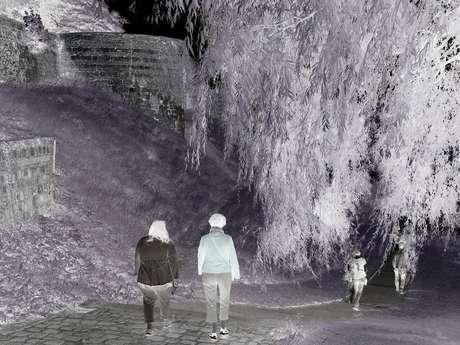 Trail nocturne des remparts de Vervins