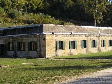 Visite de l'ancien camp militaire de Margival