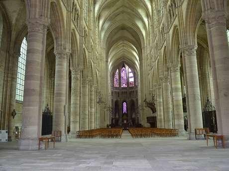 Eclats de cathédrale, des fractures de la grande guerre jusqu'à la tempête Egon