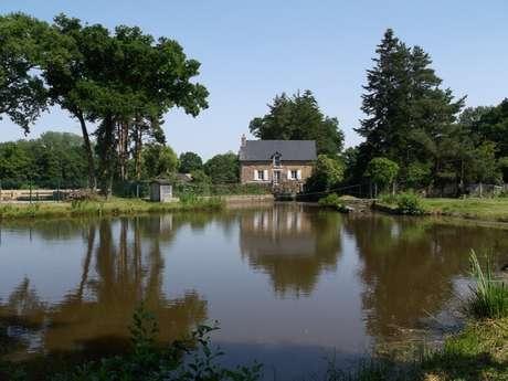 Moulin de la Fosse Noire - 3 chambres