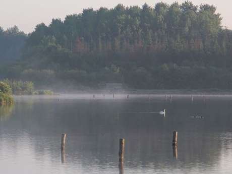 Circuit la balade des deux étangs entre Trémelin et Careil (n°120)