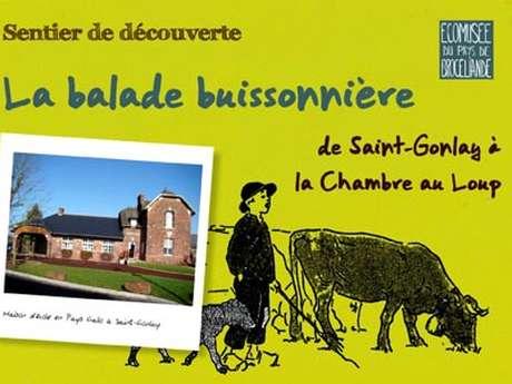 Sentier d'interprétation balade buissonnière de Saint-Gonlay au vallon de la Chambre au Loup