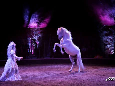 La Pommeraye equestrian theatre