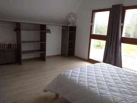 Cinéma plein air / Le Roi Lion