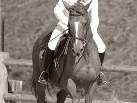 Eté Actif : Equitation