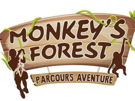 Monkey's Forest