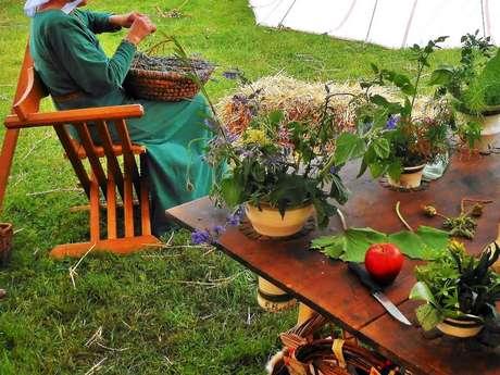 Saveurs épicées - Plantes et épices